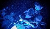 The Jimi Hendrix Revolution - Samuele Perduca (2° anno CCR) - Teatro della Luna (Sala)